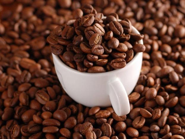 Hạt cà phê Culi bên phải có hình tròn đều đầy đặn – hạt cà phê thông thường bên tay trái như nữa trái cam cắt đôi