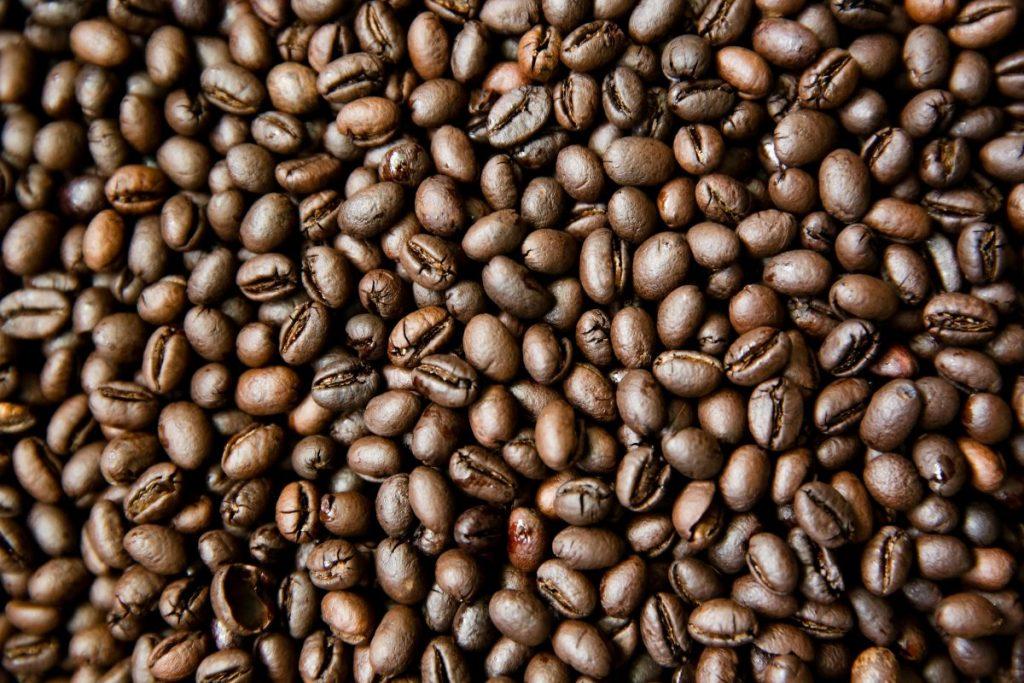 Hạt cà phê culi nhân sống