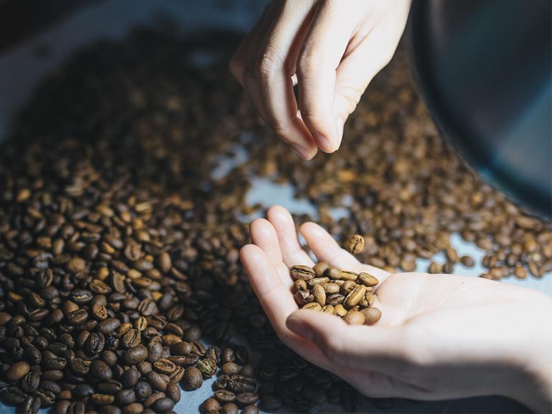 Cách thức, quy trình chế biến cà phê rang xay