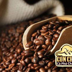 Những yếu tố ảnh hưởng đến việc xay cà phê