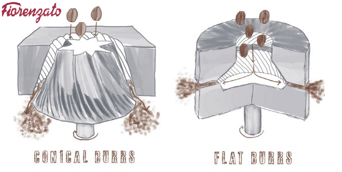 Cơ chế hoạt động trên conical burr và flat burr