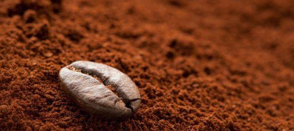 Cà phê rang mộc . Cách nhận biết chuyên sâu cà phê rang mộc